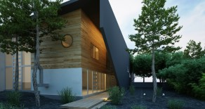 Modern Urban House